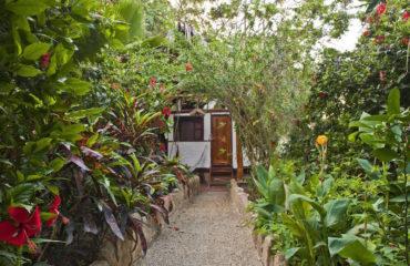 Aménager une allée dans son jardin