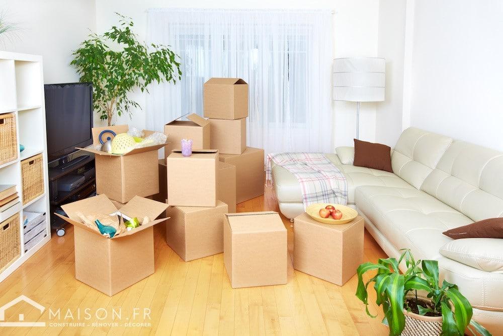 appartement maison
