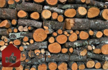 quel abri pour bois de chauffage choisir