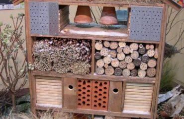 favoriser la biodiversite dans son jardin