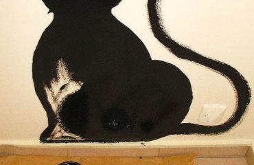 Peindre un intérieur avec une peinture naturelle
