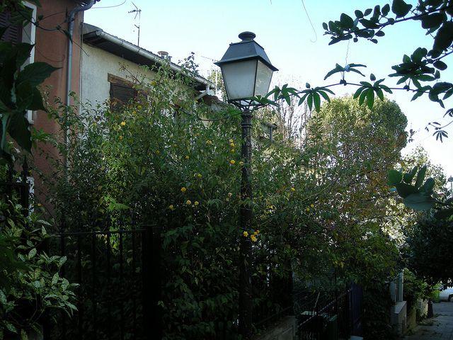 plantation jardin obligations légales